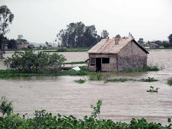 Mực nước sông Cửu Long đang lên
