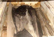 nghĩa mộ thân cây gỗ lim