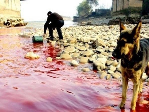 sông ô nhiễm nặng