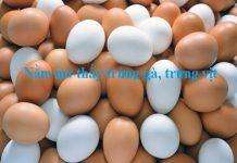 Nằm mơ thấy trứng nên đánh con số nào?