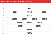 XSHCM-10-2-min